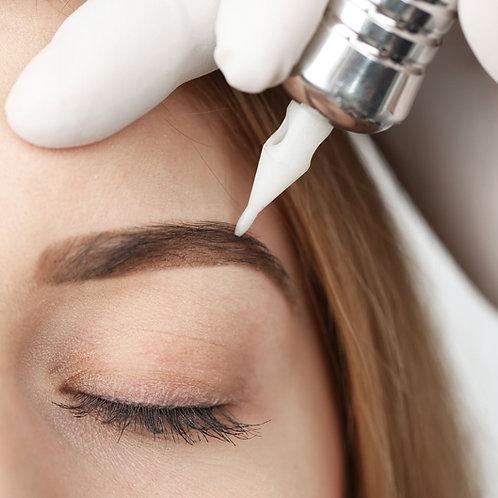 SPMU Hairstroke/Ombre Brow Course