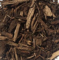 small douglas fir