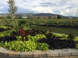 brown mulch mulch Utah 801-512-9699