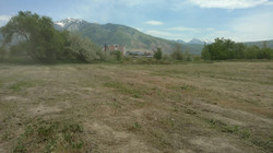field maintenance, mowing, weeding