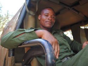 Former Poacher Turned Wildlife Protector