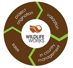 Wildlife Works REDD+ Projects