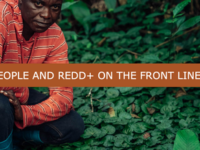 People and REDD+ on the Front Lines