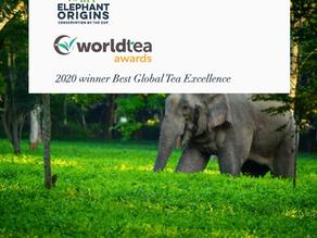 Elephant Origins Wins Top Award at World Tea Expo 2020