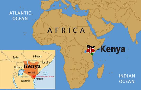 Wildlife Works Kenya
