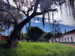 Parque Barichara