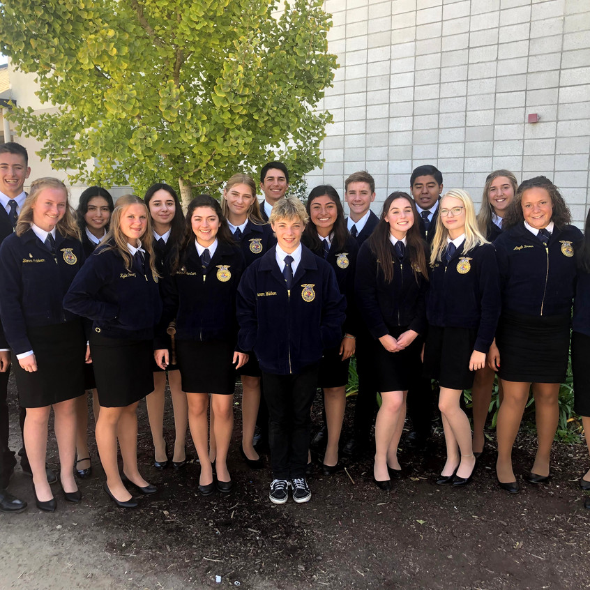 Righetti FFA Teams