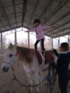 spectacle equestre ain
