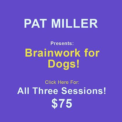 Pat Miller: Brainwork All Sessions
