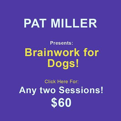 Pat Miller: Brainwork 2 Sessions