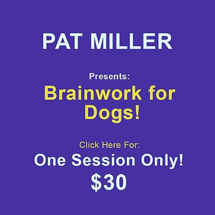 Pat Miller: Brainwork 1 Session