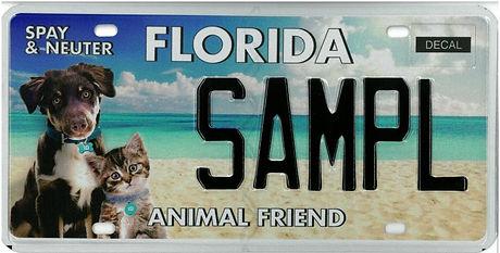 Animal Friend.jpg
