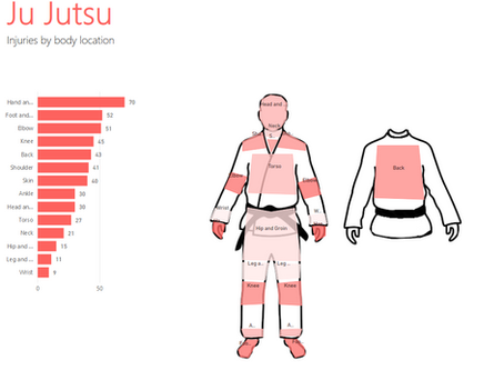 What are the Most Common Ju-Jutsu Injuries? Power BI Viz
