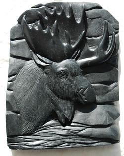 Moose  (Relief)