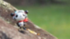 panda-z-1299683__480.jpg