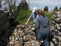 Stacking bags of oyster shells