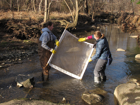 Winter Stream Monitor Screen Cleaning