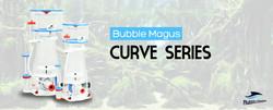 curve-banner.jpg