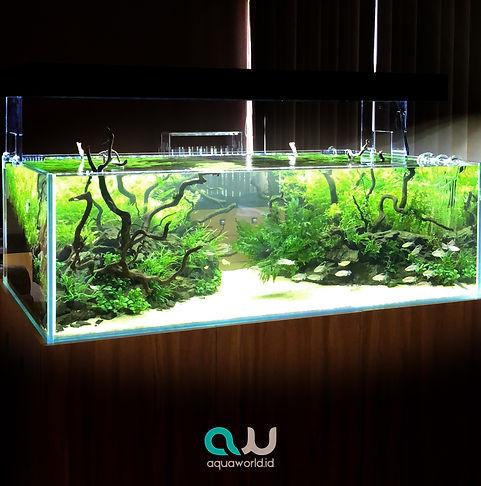 Aquaworld-fresh-water-2.jpg