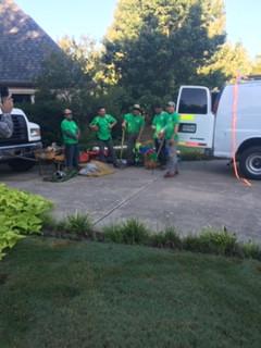 Green Eagle Team