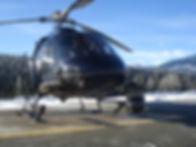 AS355-nose.jpg