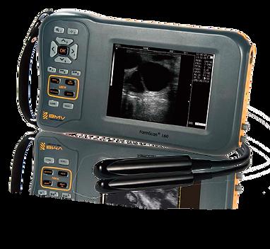 LC60-imagemsa-Ultrassom-veterinario.png