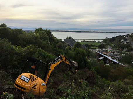 Mt Pleasant Site Clearance