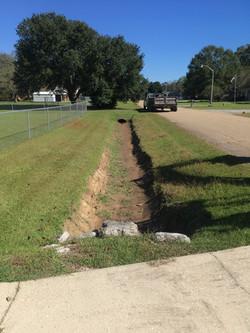 Ditch Digging Tallowwood1