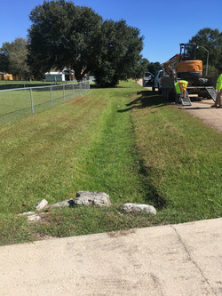 Ditch Digging Tallowwood