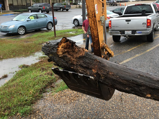 Update: IBTS Cleaning Ditches, Culverts, Canals
