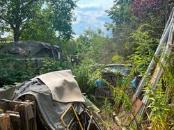 Blick aufs Grundstück - Müllablagerungen
