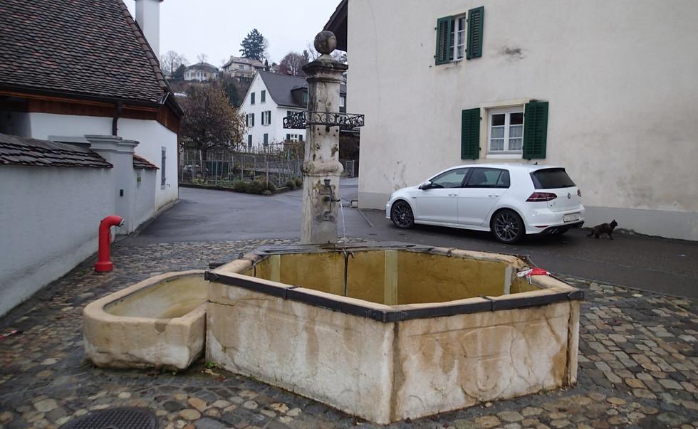 07_PC090028Oberdorfbrunnen_Dornach.JPG