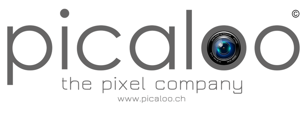 picaloo.ch, the pixel company