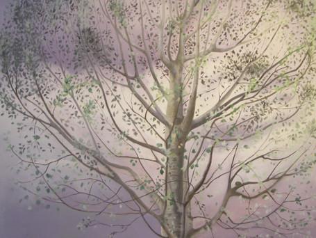 Favola dell'albero argento e della nube di pioggia