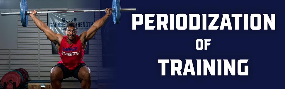 Periodizatino of training website header