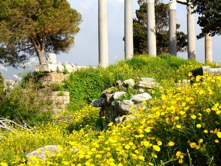 Lebanon, Resilient Beauty