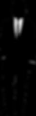 silhouette-homme-noire.png