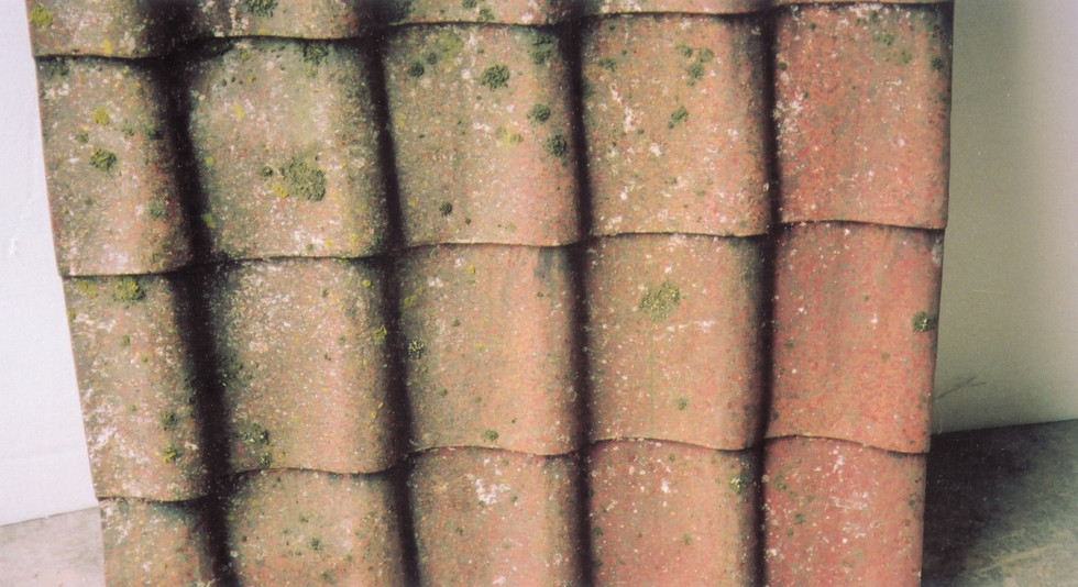 Samples of roofing tiles for English Pub scene.