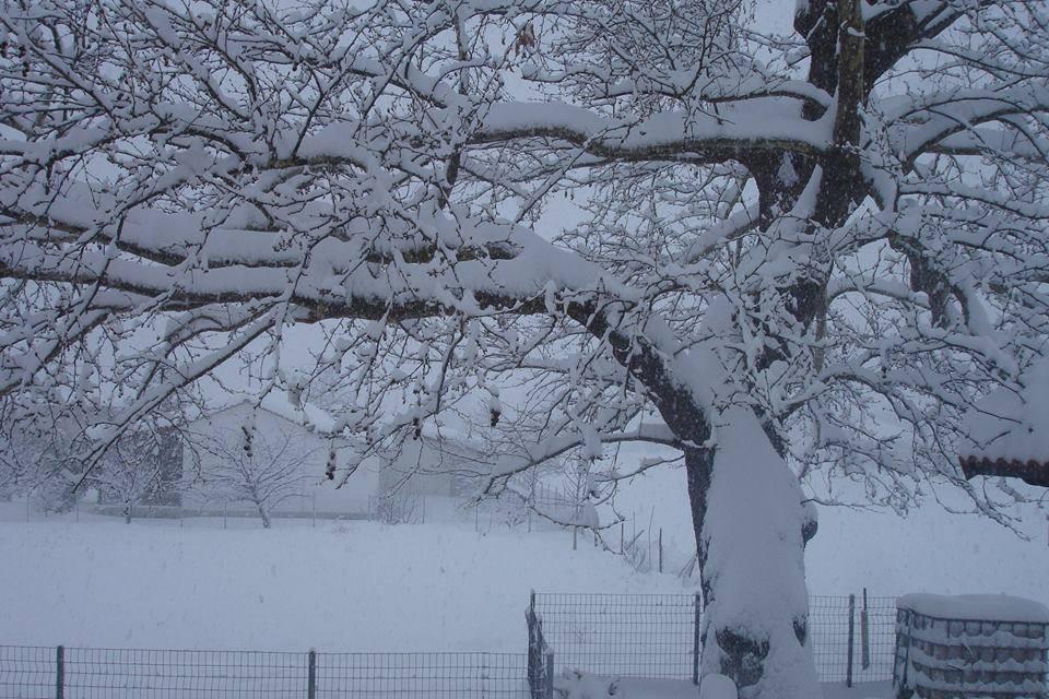 Χειμώνας στη Βίτωλη