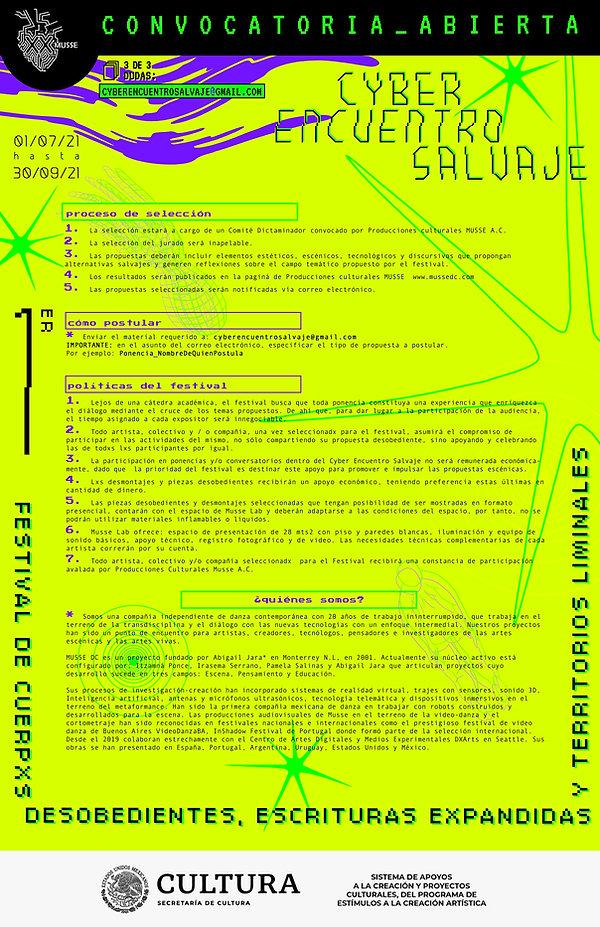 cybersalvajeliminal_010721_OFICIAL-C copia.jpg