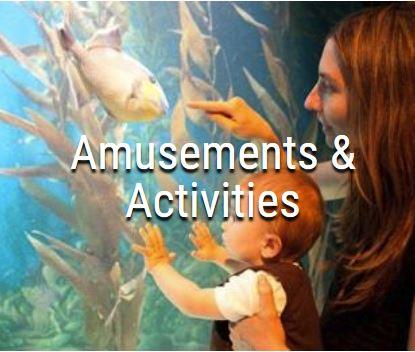 Amusements & Activities