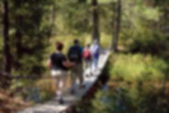 pinelands-hiking_DSC0569.jpg
