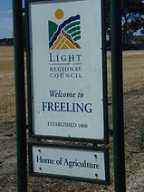 freeeling-welcome.jpg