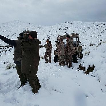 Tuatara in the snow.jpg