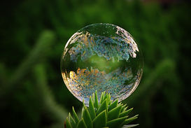 soap-bubble-1533549_1920.jpg