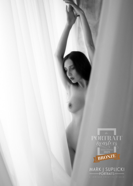 MSP1902-PortraitMstrs19-BRNZ03-Fin.jpg