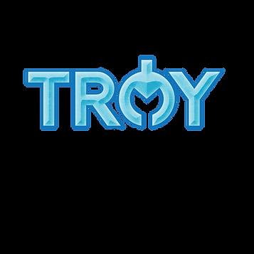 troysalt logo-01.png
