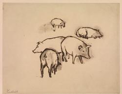 10.-Pigs.jpg