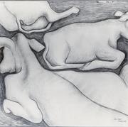 Las vacas 1952 Lápiz / papel 55 cm x 70 cm