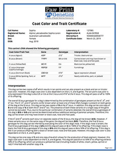 Color Coat and Trait.jpg